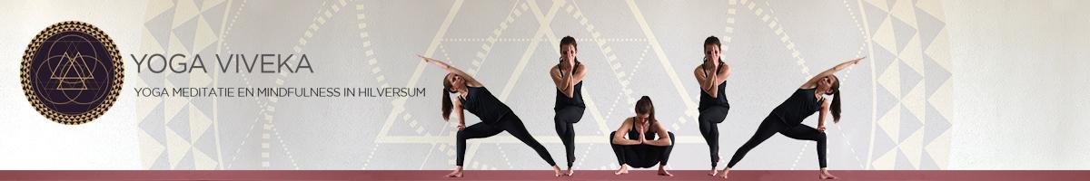 Yoga Viveka
